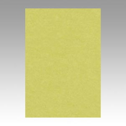 Color Drawing Paper, New Color Octavo Format Willow
