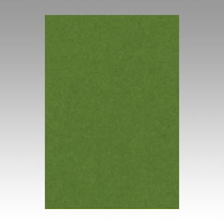 Color Drawing Paper, New Color Octavo Format Olive