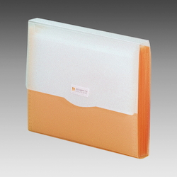 Request Document File, Orange